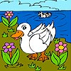 Thumbnail image for Two Ducks in the River Coloring