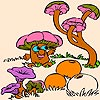 Lovely Mushrooms Coloring