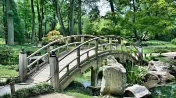 Fairy Garden Dwelling