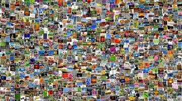 Photo Collage Tissue Box