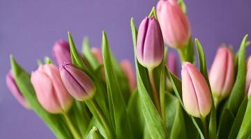 Flower Photo Bouquet