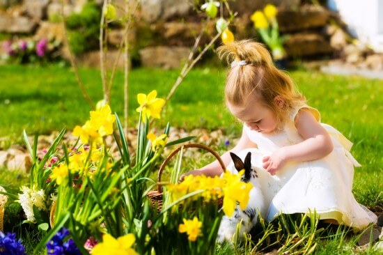 Little Girl on an Easter Egg hunt on a meadow in spring, she has