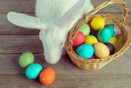 White Easter Bunny With Basket