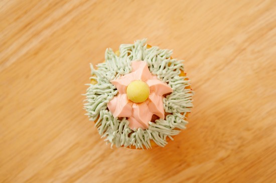 Easter Bunny Cupcakes for the Holiday