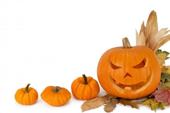 bigstock-Pumpkin-Border-5929034