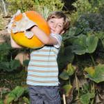 Kid-Safe Pumpkin Karving