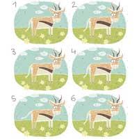 Gazelle Matching