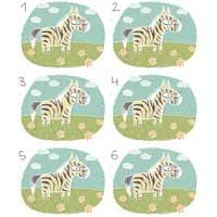 Zebra Matching
