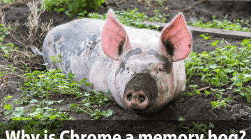 Why Chrome is a Memory Hog?