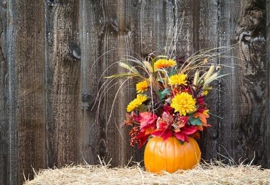 Pumpkin-flower-arrangement-on--52614847