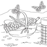 Basket and Butterflies