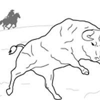 Bull Wrangling