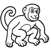 Apes Monkeys Coloring Pages Surfnetkids