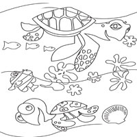 crush and squirt - Crush Finding Nemo Coloring Pages