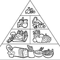 Food Pyramid Coloring Page Food Pyramid » Coloring Pages » Surfnetkids