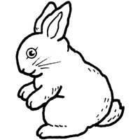 Hippity Hoppity Bunny