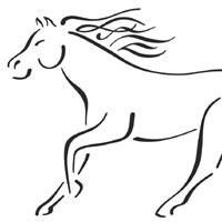 Horse At Gallop