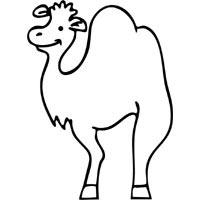 Lumpy Camel