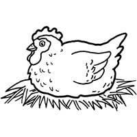 Nesting Hen