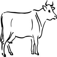 Pensive Cow