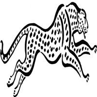 Super Fast Cheetah