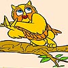 Coy Owl Coloring