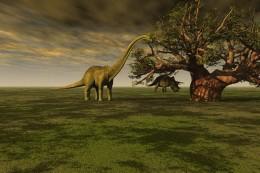 Dinosaur Spell