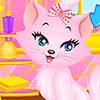 Lovely Princess Cat Dress Up