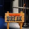 The Prison Break Puzzles