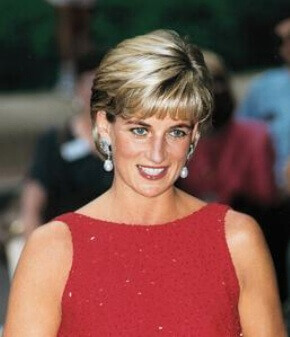 contribution of princess dana Diana and the princess got along 'she has never had any false illusions [and knows] that a change of public opinion could undermine the monarchy's role.