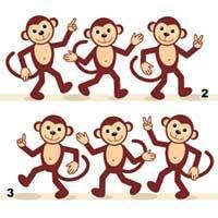 Monkey Matching
