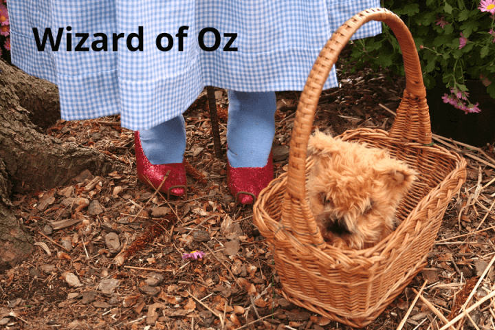 Wizard of Oz online resources