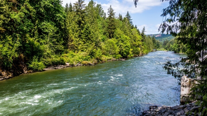 River resources for students and teachers