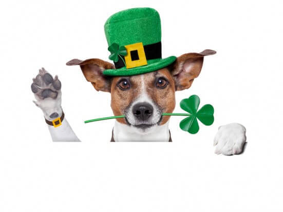 Great Clip Art Sites for St. Patrick's Day