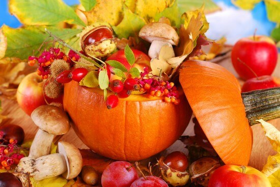 Where to Get Great Thanksgiving Decorations