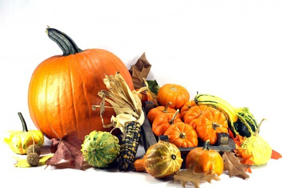 Inexpensive Ways to Decorate for Thanksgiving