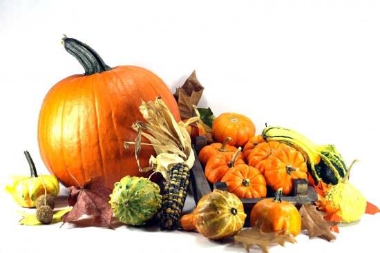 bigstock-Thanksgiving-Day--2123167